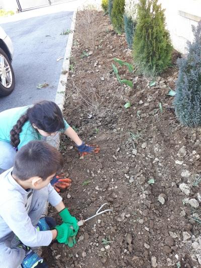 Matéo et Lorena en pleine préparation pour la plantation !