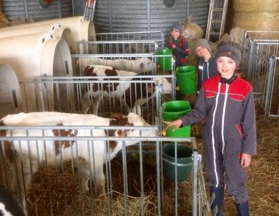 Héloise à la ferme - pour nourrir les veaux !