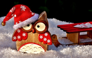 Chouette ! c'est Noël !